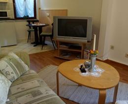 kombinierter Wohn-/ Schlafraum mit Bett, Sitzecke und Fernseher